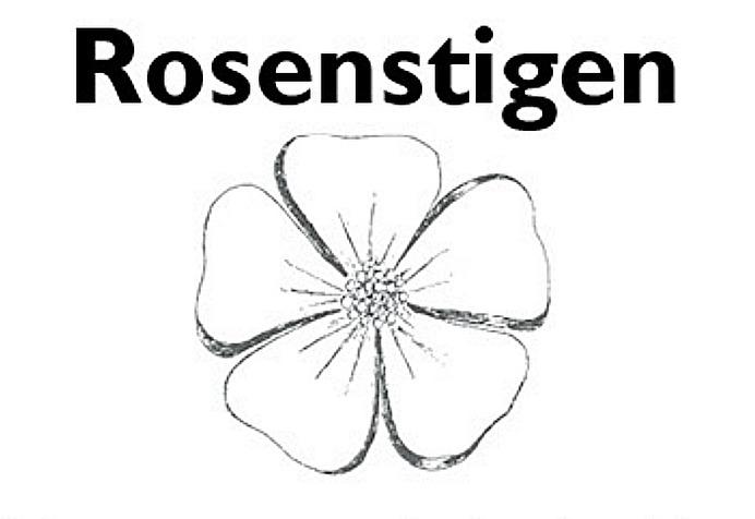 Rosen Alba rosa minette, Gudhems-rosen tecknad av Ebon Lundgren - planterad vid Klostermuseets  norra gavel i Varnhem.