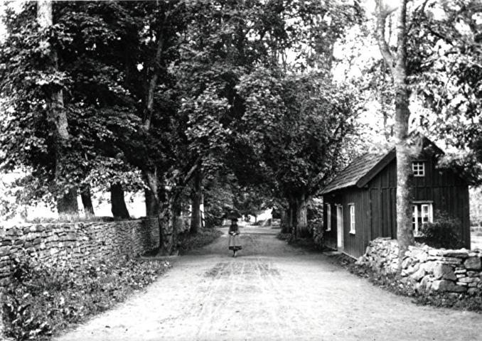 Fotograf Ludvig Ericson, Skövde - fotograferat 1892