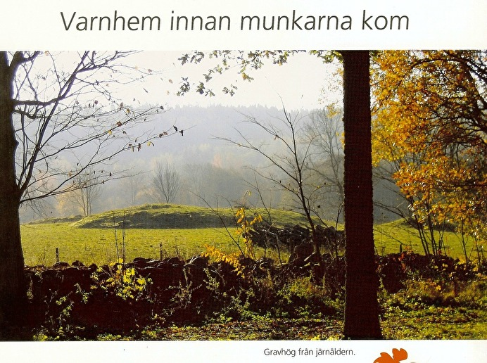 Ur Västergötlands Museums - Innan munkarna kom