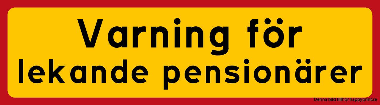 Bästa Dejtingsajter För Pensionärer