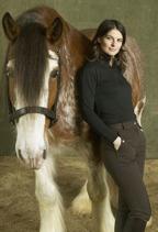 Häst och Modellfotografering Källquist