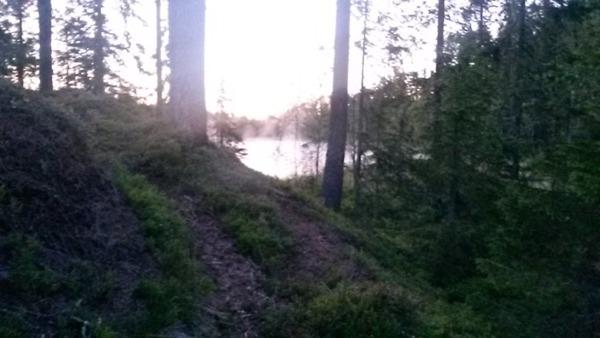En lätt dimma över den lilla skogstjärnen.