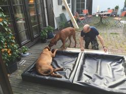 Husse i snickartagen och bygger valplåda 2015