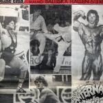 Giganternas kamp,programtidningen 1