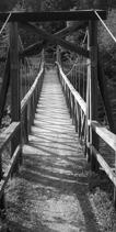 gml gångbro lillhärdal siv busk
