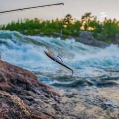 fiske inland