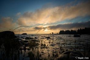 magdalena norrman kronörens nordmal