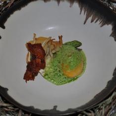 Kycklingskin