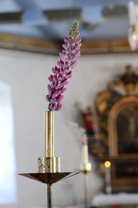 Blommor_lupinikyrkan_ElinOlsson