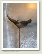 Flygande fågel
