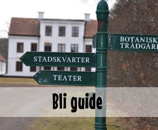 Bli guide