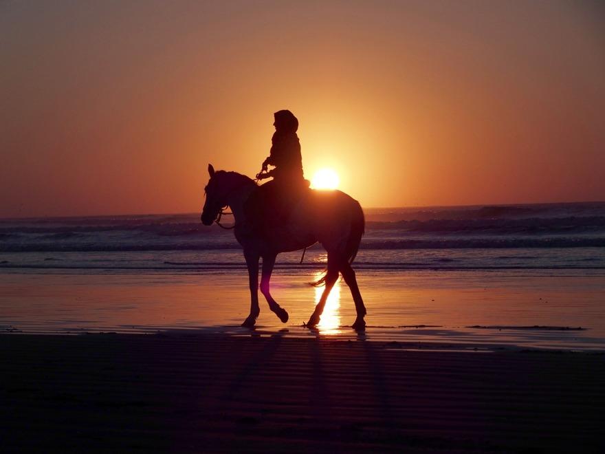 Rida häst, rida dromedar, åka landrover, vandra. Marockoresan.se skräddarsyr din upplevelseresa precis som du vill ha den. Fotot i Essaouira.