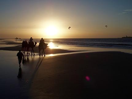 Solnedgång från kamelryggen i Essaouira rekommenderas