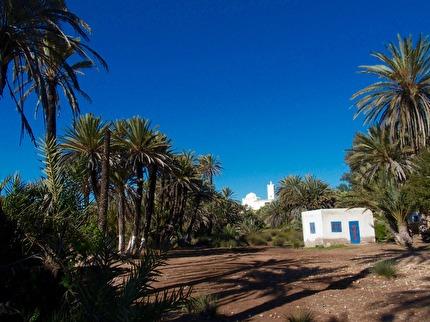 Vi besöker oasen Ain el Hajar efter den stora souken i Had Draa. marockoresan.se