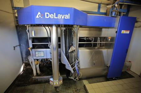 Mjölkningsrobot