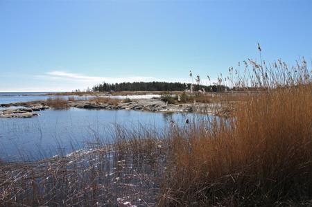 Öster om Store Holmen ligger Skallholmarna som är Fågelskyddsområde under tiden 1 april till 31 juli.