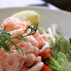 shrimp-salad-833214_640