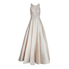 Basix Embroidered Golden Gown | Champagne