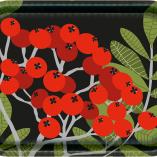 Bricka Rönnbär