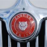 Jaguar front