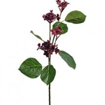 Kvist med blommor