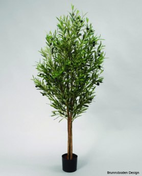 Olive Tree 110cm - 08-110 Olive Tree