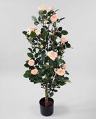 Rosetree Pink 120cm