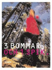 3 bommar och 1 spik av Ylva Carlsdotter Wallin
