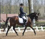 Med Isadora tog Amanda 70% plakett Nr 5 och vann     % jakten 2011.