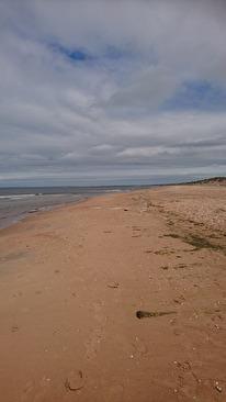 mäktig milslång strand inbjöd till långa härliga morgonpromenader