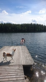 170803 Årliga doppet i Magsjön för Lars :)
