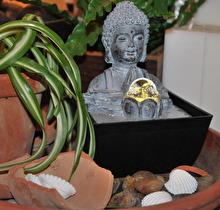 Fontän Buddha