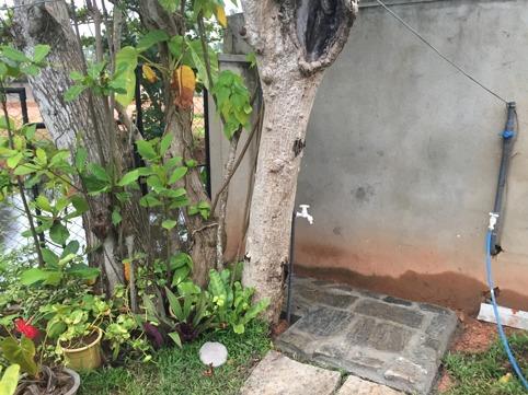 Uteduschen är stensatt och idag blev jag nästan färdig med att klä in träd och dusch i kokosrep.