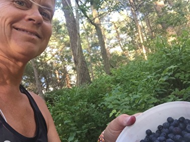 Ren meditation och tankning i form av blåbärsplockning.