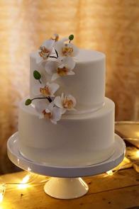 En av tårtorna som Thora visar på mässan