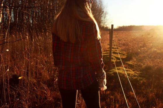 Igår när jag var ute och gick sken solen och allt var  guldigt runt omkring mig!