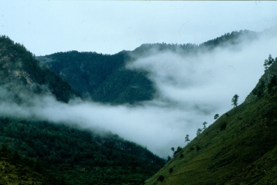 Dimman rullar in över bergen i Bhutan.