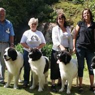 Sune med pappa Lotus, Bodil med Bettys syster Emma,  Ninna med Betty samt Pernilla med Implala