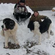 Bus i snön med barnen