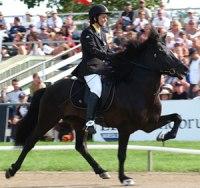 Maria med egenuppfödda Kolgrimur från Slätterne. Världsmästare 2009 & 2011