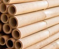 Bambu, japansk trädgård, bambu till dekoration