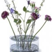 KLONG-ÄNG Vas- blå