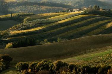 Toscanas höjder med svindlande utsikt.