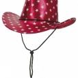 BESTÄLLNINGSVARA Cowboyhatt amerikansk 79kr