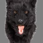 BESTÄLLNINGSVARA Deluxe (rörlig käke) animal mask bear 929kr