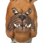 BESTÄLLNINGSVARA Latexmask Bulldog 199kr