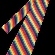 Rainbow tie 65kr