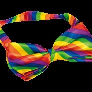 Fluga rainbow 119kr