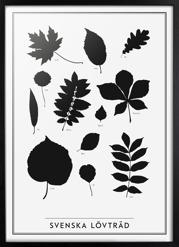 Svenska Lövträd