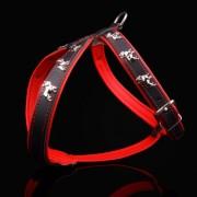 Fransk Bulldogg Röd-Svart